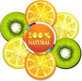 Rebanadas de frutas deliciosas 05 del vector