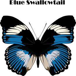 Drei schöne Schmetterlingsvektoren