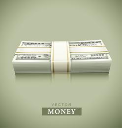 Usd Vector 2