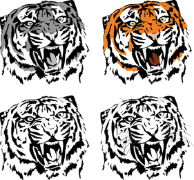 Tiger Image 05 Vector