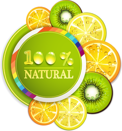 Rebanadas de frutas deliciosas 01 del vector
