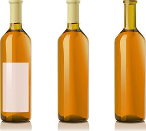 Vector vino y botellas de champán