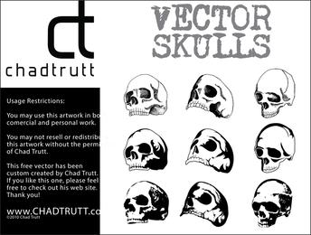 Crânios Humanos 3