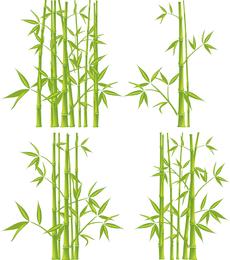 Conjunto de ilustración de bambú verde