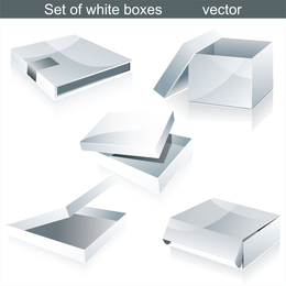 Y caja de cartón plantilla vector