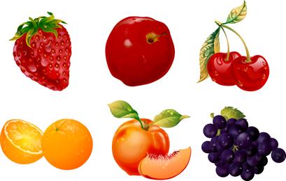 Vetor de frutas ultrafinas