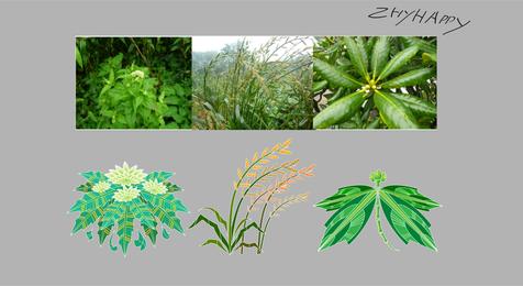 1 Chinese Medicinal Plants
