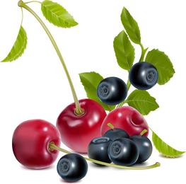 Vector de tema de frutas y verduras