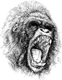 Ferocious Gorilla Vector Material