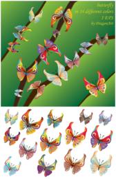 Vector Butterfly gratis descargar