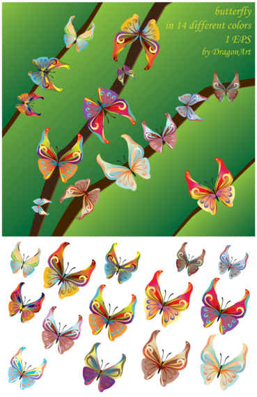 Vector Butterfly for free Download