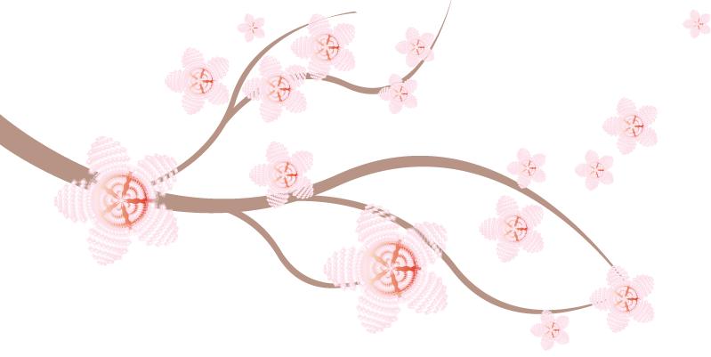 Cherry blossom branch illustration