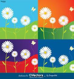 4 diseños de flores de margarita