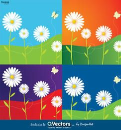 Vector Daisies - Exclusive Vector Graphics for qvectors.net