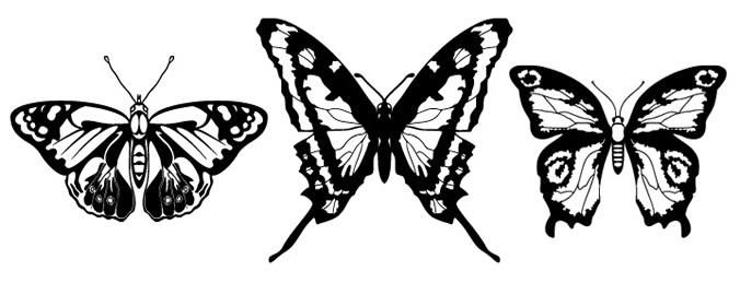 Three Vector Butterflies - Download Page