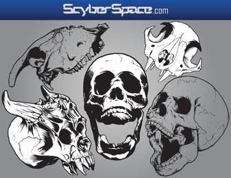 Skull Vector Pack1