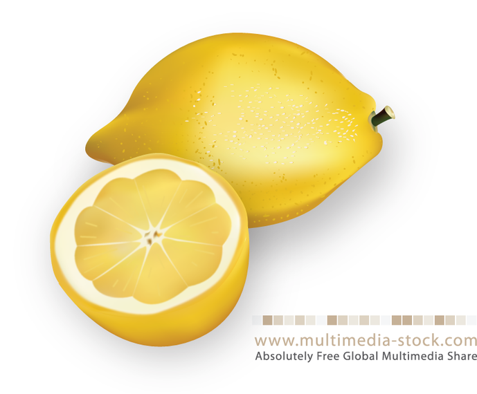 Yellow lemon illustration