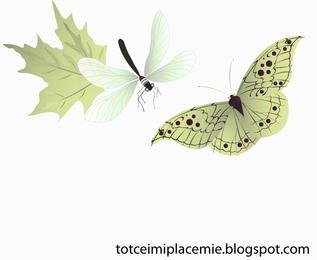 Vector de mariposa y libélula
