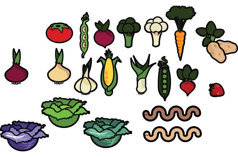Vegetables Vector Pack