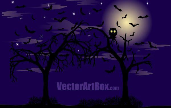 Cartel del bosque oscuro