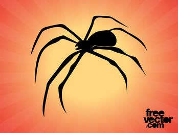 Spider Silhouette with Curvy Legs