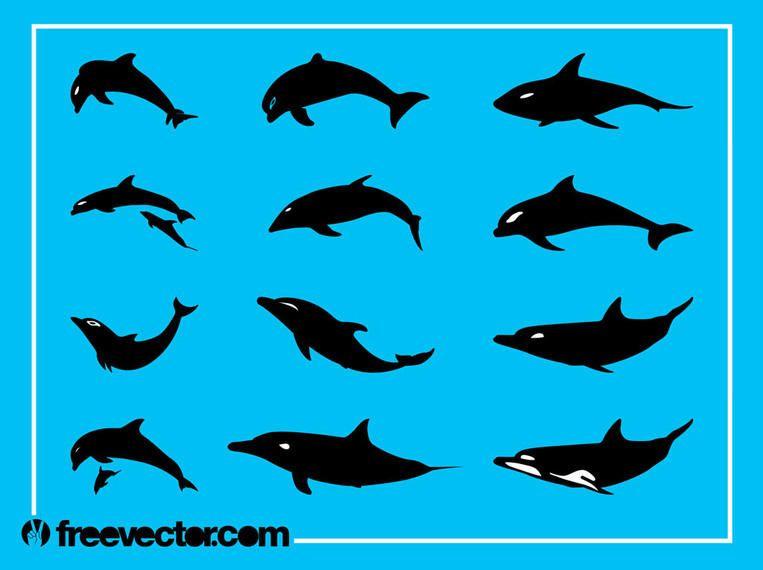 silhueta do golfinho pacote baixar vector
