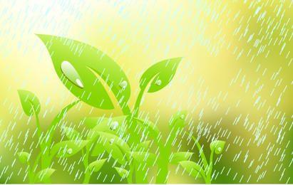 Planta en la lluvia