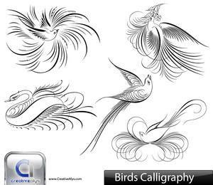 Creativo paquete de aves caligráficas