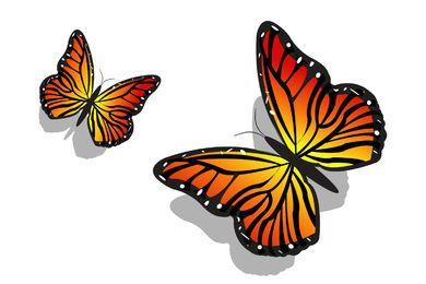 Par de borboletas coloridas