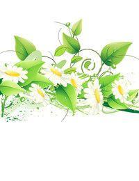 Margaritas blancas abstractas con ramas de flores arremolinadas