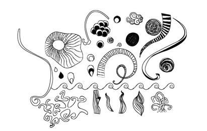 Hand Drawn Vector Doodles