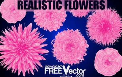 Free Vector Realistic Flowers