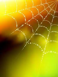 Fondo borroso de tela de araña que brilla intensamente con gota