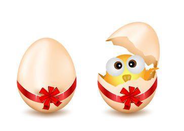 Broken Egg with Chick Inside