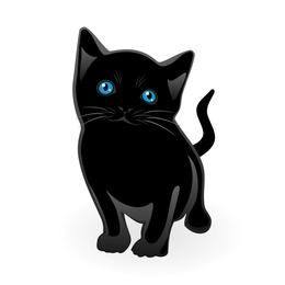Pouco vetor gato