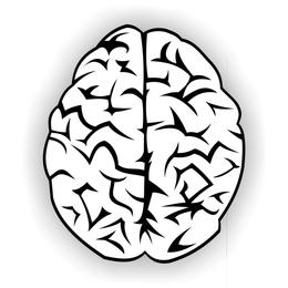 Brain vector free