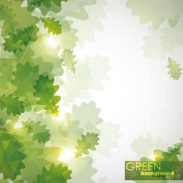 Bright Sunlight with Green Leaves in Front