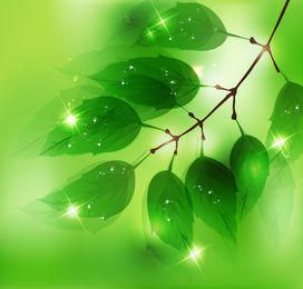 Green Leaves Sun Lights Background