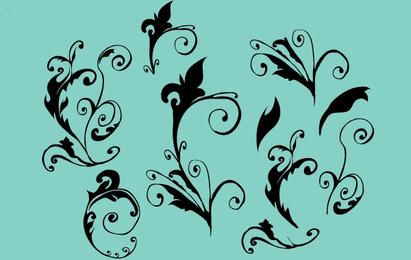 Curly Vector Floral ornaments