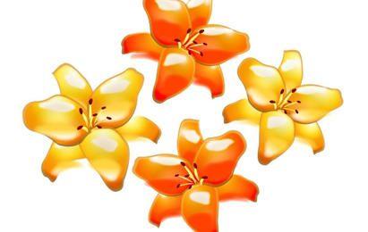 Gelbe und orangefarbene Blumen