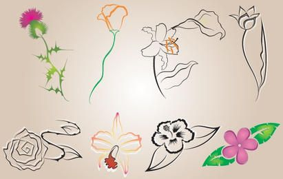 Several Flowers Vector