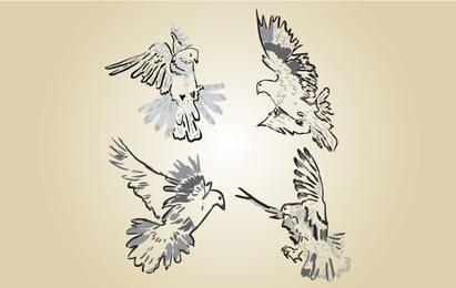 Sketchy Pigeon Vector