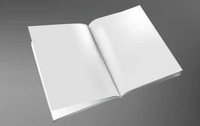 3D Book Template Vector