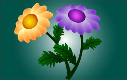 Flores de crisântemo