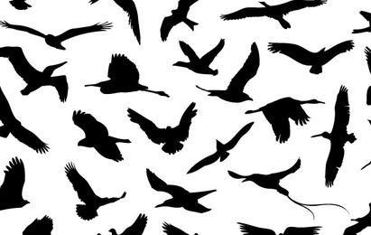 30 verschiedene fliegende Vögel
