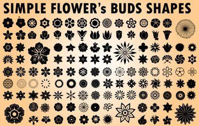 Flower Bud Pacote Imagens