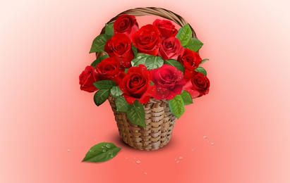 Realistic Bunch of Rose in Basket
