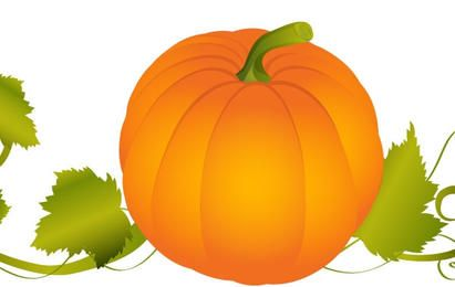 Pumpkin With Vines Vector