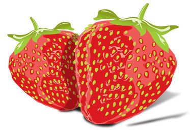 Imagen de Vector de sabrosas fresas gratis