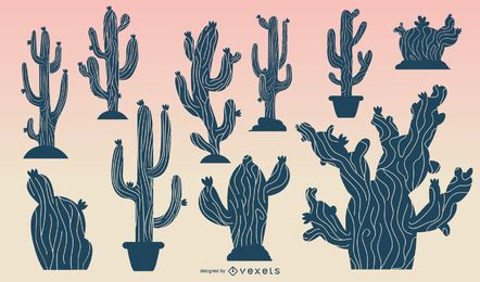 Kaktus im Wüstensonnenaufgang